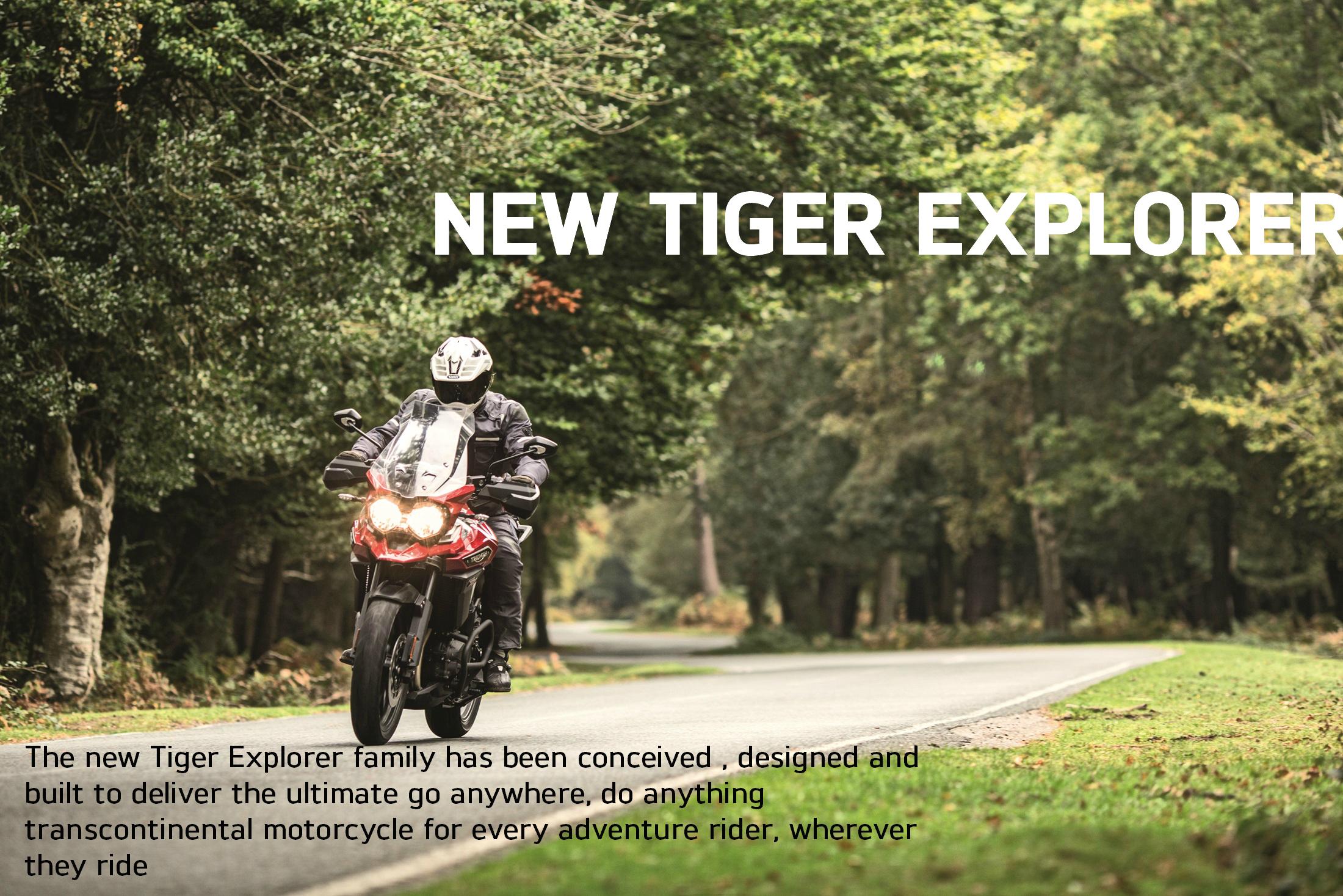 27 Tiger Explorer