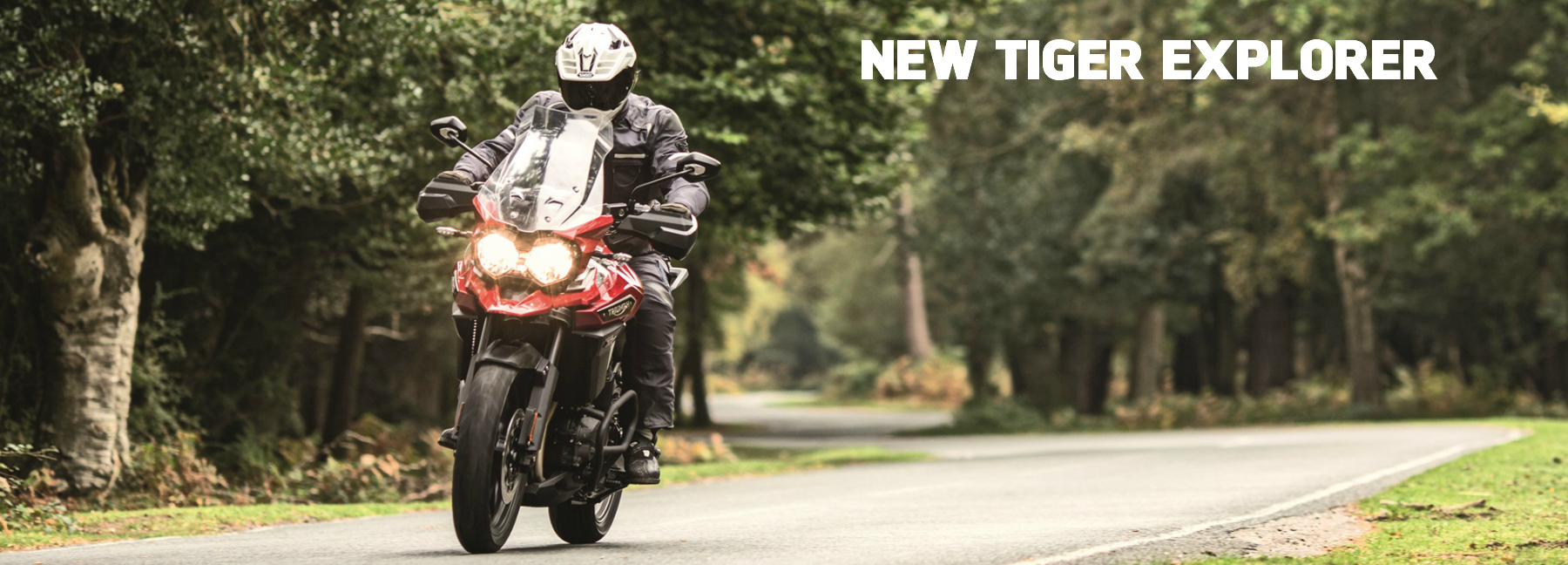 2016 Triumph of Westchester Tiger Explorer Family