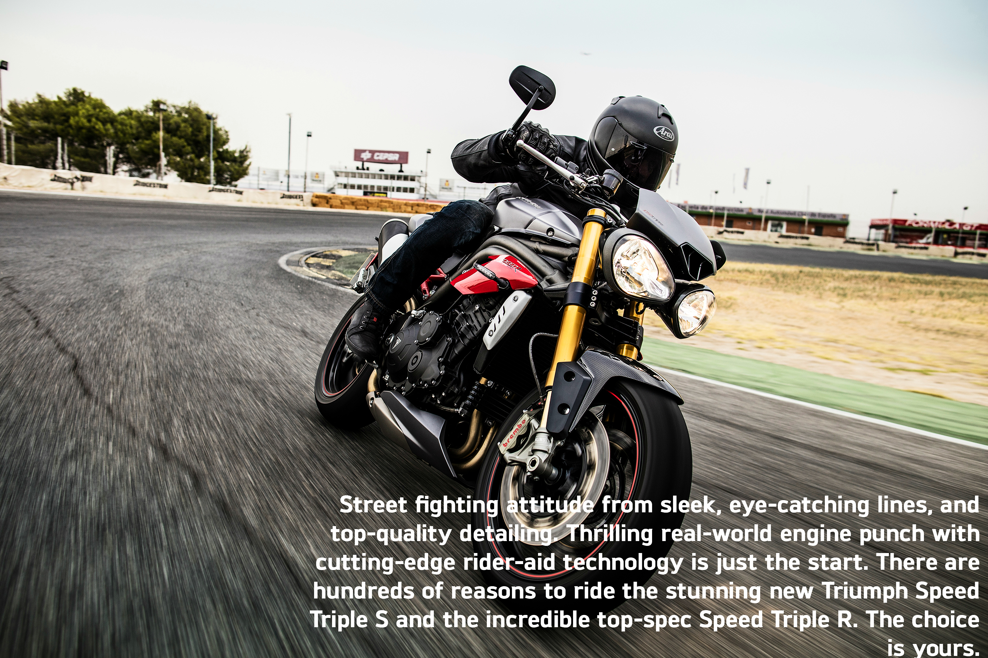 Speed Triple Family Chassis Overview